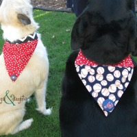DIY Dog Collar Bound Bandanas