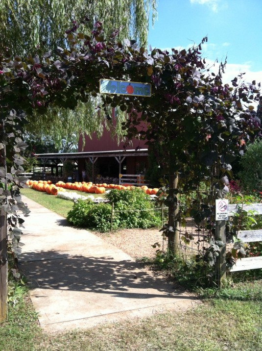 Yahoo Farm