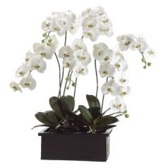 Euro Style White Orchids 42-Inch-H Faux Flower Arrangement
